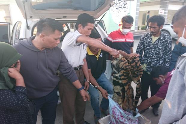 Polisi Gagalkan Perdagangan Kulit Harimau di Riau