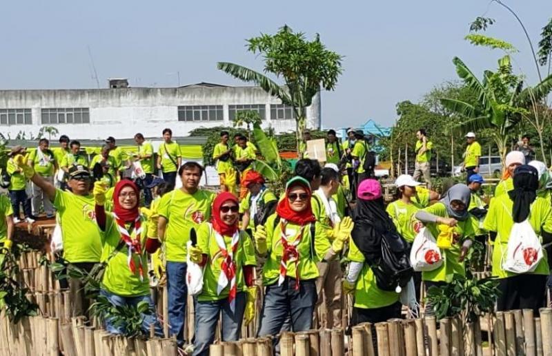 500 Orang Relawan Jepang Tanam Pohon Bakau Dipesisir Utara Jakarta