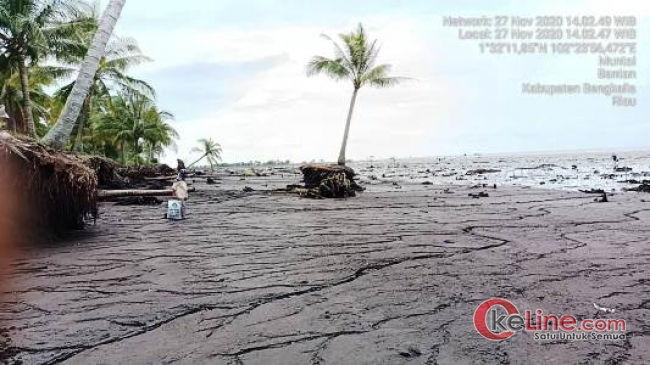 Video Abrasi di Bengkalis Viral, Ketua IPMPL: Pemkab Bengkalis Tolong Selamatkan Pulau Kami