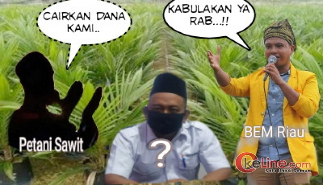 Dana PSR Petani Sawit Bengkalis Program Jokowi Tak Kunjung Cair, BEM; Turunkan Penyidik