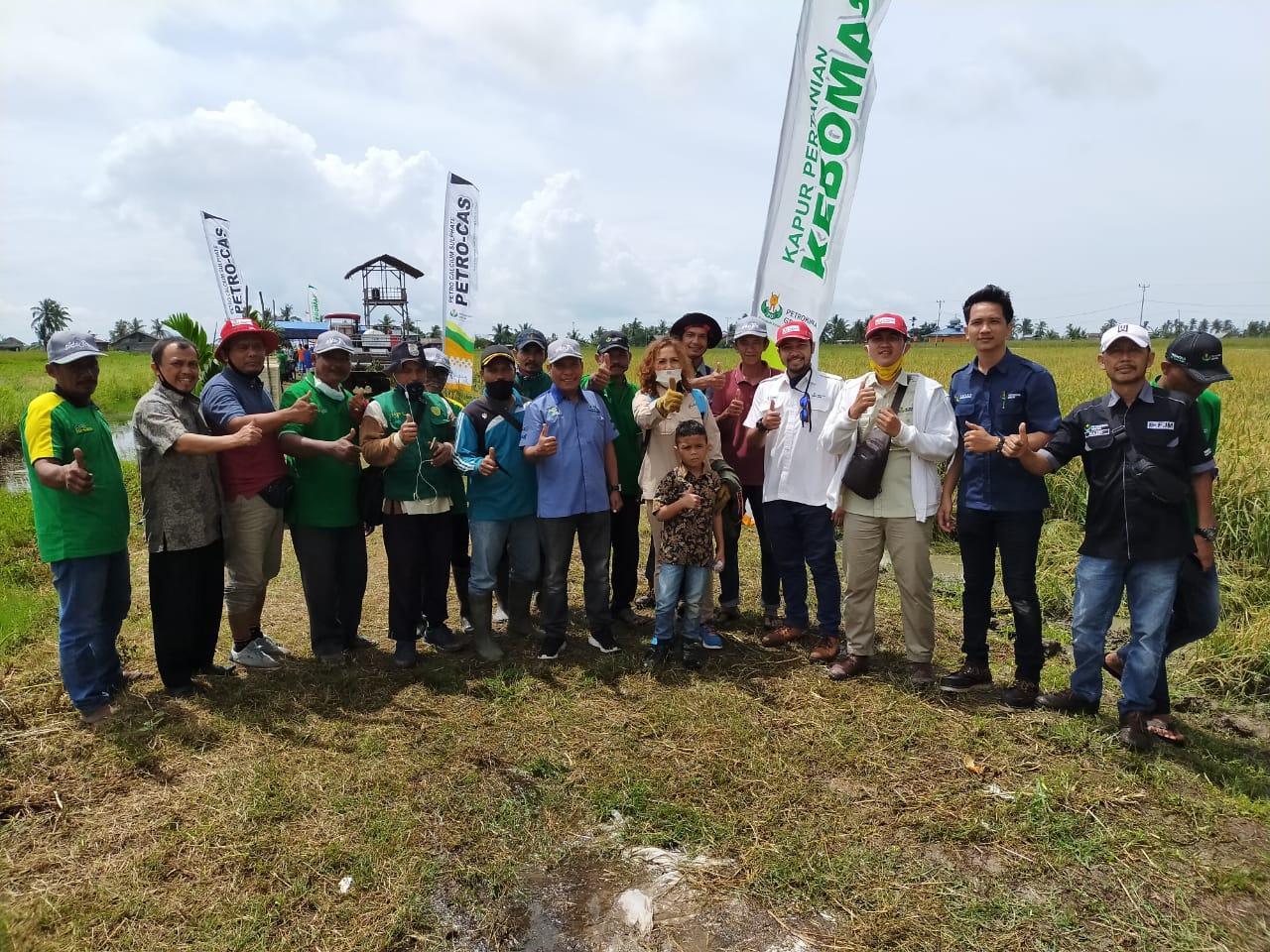 Cv. Kuala Raja Optimis Bisa Membantu Masyarakat Mendapatkan Hasil Produksi Panen Padi Memuaskan