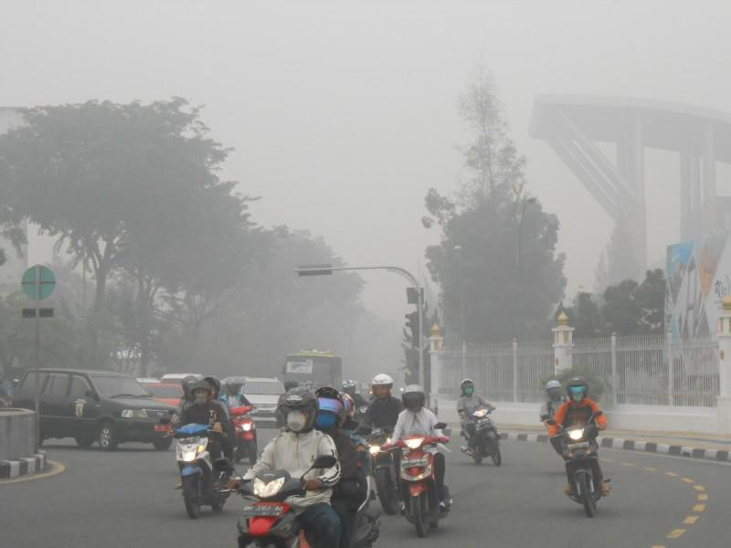 Asap Tebal Masih Selimuti Riau. BMKG Rilis Data dan Cuaca Terbaru