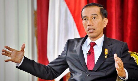 Presiden Jokowi Akan Ambil Sikap Jika Freeport Sulit Diajak Musyawarah