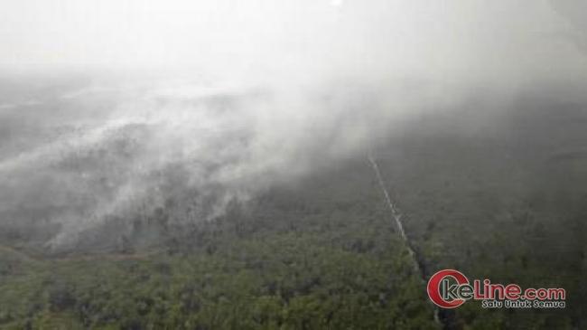 Kalau HM Harris Lalai, Sebentar Lagi Pelalawan Akan Aktif Jadi Penyubang Asap di Riau