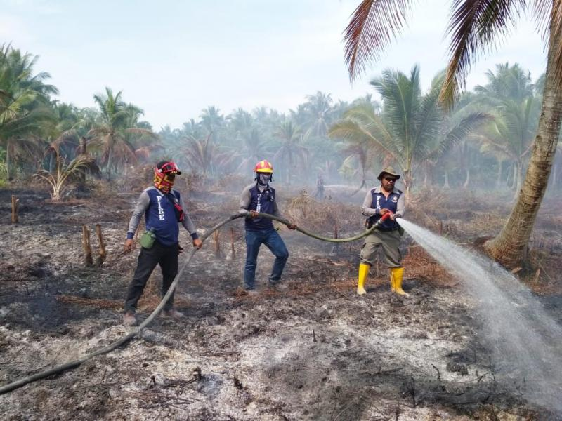 6 Tersangka Karhutla Riau Akan Ditarik ke Polda Riau