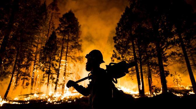 Titik Api Terpantau di Rohul dan Pelalawan