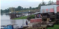 Warga Rantau Kopar Resah, BKSDA Riau di Minta Turun Untuk Menangkap Buaya