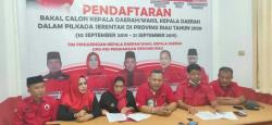 PDI-P Riau Buka Penjaringan Calon Kepala Daerah