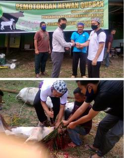 Gema Takbir Iringi Penyembelihan Hewan Qurban di PN Rohil