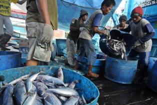Riau Usulkan 80 Ribu Nelayan Ikut Asuransi KKP