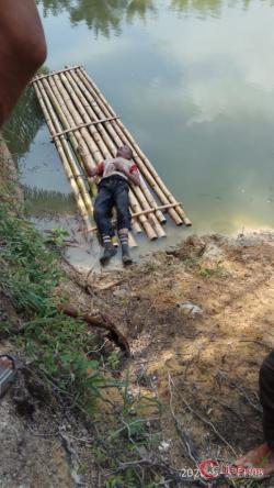 Mayat Rusman Ditemukan Tergeletak Dilahan Perkebunan