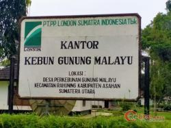 PT Lonsum Perkebunan Gunung Melayu Diduga Lakukan Intimidasi Hukum Terhadap Anak Dibawah Umur