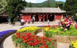 Risetnya Tripcom Group Ungkap Bulan Depan Wisata di Hari Nasional China Meningkat