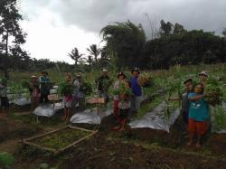 Komitmen lanjutan produksi sawit yang bertanggung jawab dari Sinar Mas Agribusiness and Food