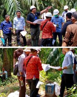 Caplok Lahan Warga Berdalih Areal Lahan HGU, Hakim  Gelar Sidang PS di Perkebunanan Sawit PT.GMR