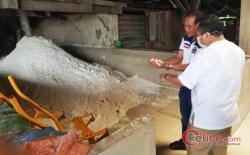 Produksi Sagu Meranti Melimpah, Bupati: Selain Beras Sagu Baik Jadi Makanan Pokok