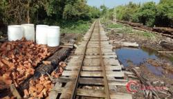 Humas PT Diamond Raya Timber Ungkap KLHK Terlibat Terbitkan SK IUPHHK-HA