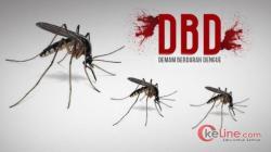 Plt Dinkes Akui DBD di Trenggalek Meningkat