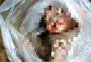 Heboh, 11 Jasad Bayi Ditemukan Polisi Diloteng