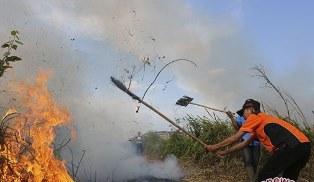 20 Ha Lahan Pemkab Bengkalis Terbakar